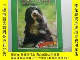 二手書博民逛書店Houghton罕見Mifflin Soar to Success: Rosie Visiting Dog Lv4