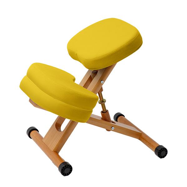 兒童椅 坐姿矯正 學習椅 美姿調整椅 工學椅 【S0072】藤野兒童工學坐姿矯正椅(三色) 收納專科