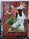 挖寶二手片-X23-008-正版DVD*動畫【龍騎士(1)/2碟】-國語發音