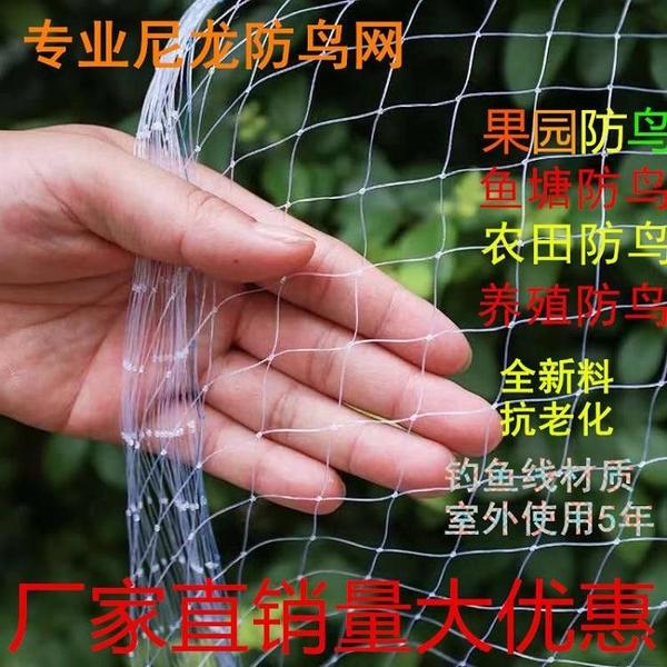 果園防鳥網葡萄櫻桃網大棚果樹防鳥用的網魚塘泥鰍養殖尼龍天網 快速出貨 快速出貨