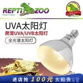 曬背燈 REPTIZOO uva uvb全光譜太陽燈陸龜爬寵加熱燈爬蟲陸龜烏龜曬背燈 快速出貨