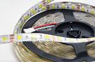 5050軟燈條5米300燈(全配) 可調色溫 防水(新產品)