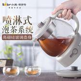 ZCQ-A10Q1養生壺全自動迷你加厚玻璃花茶杯黑茶煮茶器 NMS 露露日記