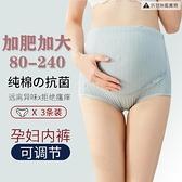 大碼孕婦內褲女高腰加肥加大中晚期純棉托腹可調節【貼身日記】