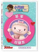 迪士尼開學季限時特價 小醫師大玩偶:羊羊好朋友 DVD (購潮8)