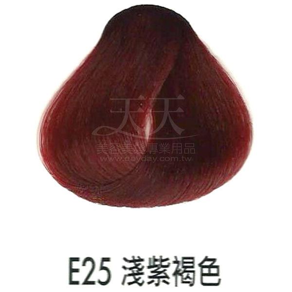 【專業推薦】耐婷 亮彩染髮劑 E-25 淺紫褐色 60g [36526]