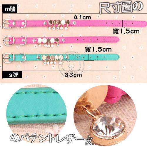 【zoo寵物商城】dyy》高檔犬貓用水鑽項圈S號1.5*32cm