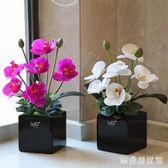 高仿真PU蝴蝶蘭花藝套裝 現代簡約桌面花會議裝飾花帶陶瓷花盆 QG27159『樂愛居家館』