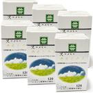 速可補超級鈣120粒*6瓶(素可補、植物...