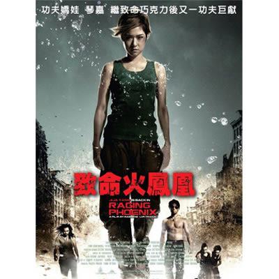 致命火鳳凰DVD