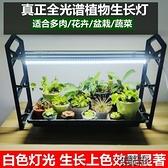 植物補光燈 多肉補光燈上色全光譜LED生長燈家用室內花卉仿太陽光 【快速出貨】