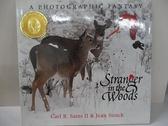 【書寶二手書T2/少年童書_EJY】Stranger in the Woods: A Photographic Fantasy_Carl R. Sams, Jean Stoick