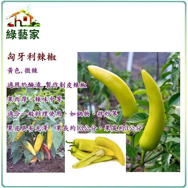 【綠藝家】大包裝G48.匈牙利辣椒(黃)種子150顆