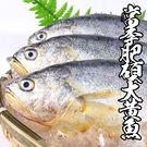 當季肥碩大黃魚 *1隻組 (400g±1...