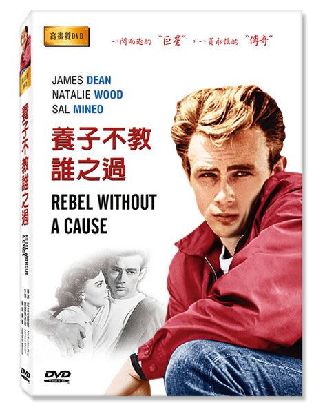 新動國際【養子不教誰之過 Rebel Without a Cause】高畫質DVD (全新中文字幕)