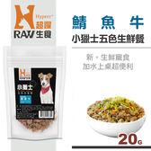 【HyperrRAW超躍】小獵士五色生鮮餐 鯖魚牛口味 20克