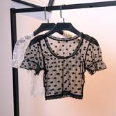透明蕾絲打底衫女短袖新款網紗上衣短款波點內搭透視薄紗百搭 雙11 伊蘿