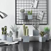 仿真植物裝飾假花擺件ins風北歐盆栽綠植室內客廳多肉小盆景擺設