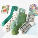 綠色系列櫻桃加厚大人中筒襪 大人襪 襪子 中筒襪