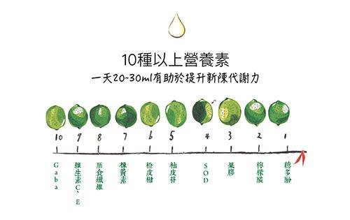 333代謝馬拉松計畫【萃綠檸檬】 L80萃綠檸檬酵素精萃液/12盒