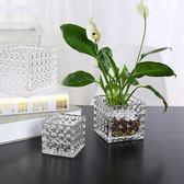 現代簡約方形珠點花器綠蘿銅錢草水培盆玻璃花瓶透明大號桌面擺件 喵小姐