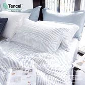 加大雙人床包枕套兩件組【不含被套】【 DR1016 ROY 】 300織天絲™萊賽爾   台灣製 OLIVIA