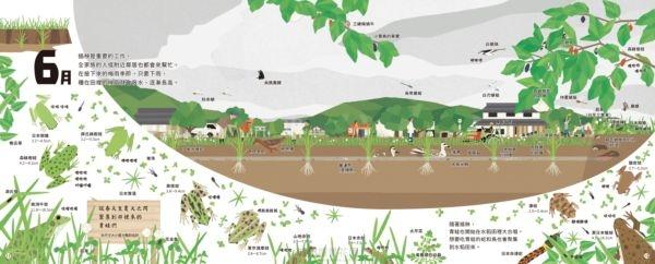 【里山的一年繪本1】水稻田的一年