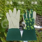 園藝手套豬皮防割防刺月季玫瑰防扎耐磨加厚花園工作保暖勞保防寒