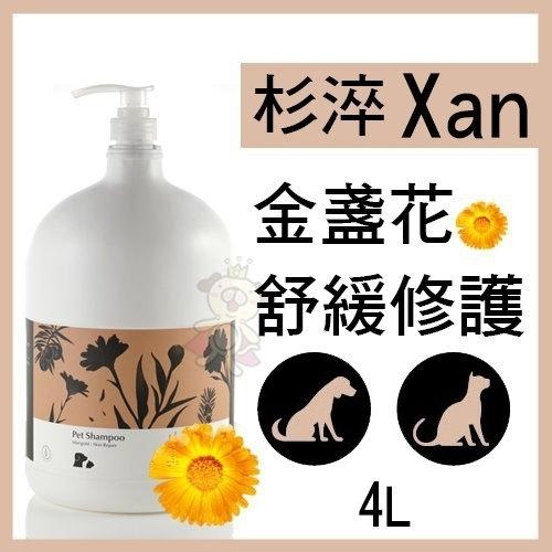 『寵喵樂旗艦店』杉淬Xan》金盞花舒緩修護寵物洗毛精4L