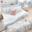 3M 吸濕排汗 頂級天絲單人床包涼被三件組-多款任選 台灣製