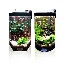 派樂大亨 創意無限生態水族缸(送LED燈+過濾器) 風水招財如意水族箱 生態魚缸