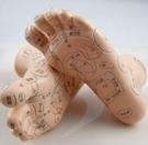正品專利超清晰足模足部反射區模型足療穴位模型按摩腳模型
