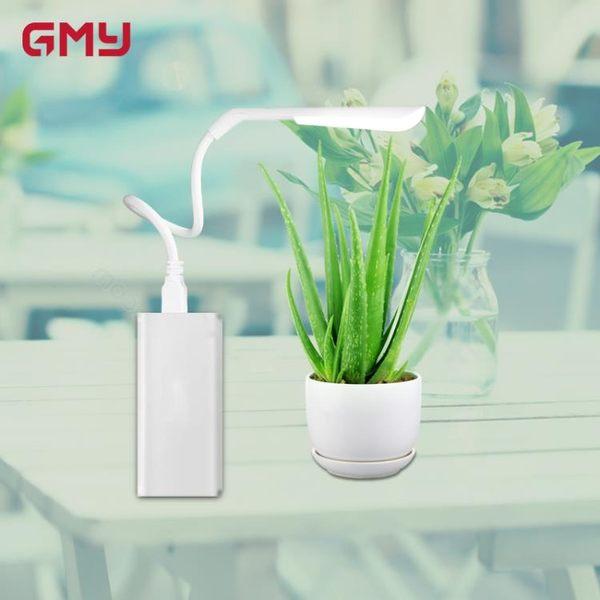 廣明源LED植物燈usb植物生長燈室內陽光多肉花卉盆栽usb補光燈