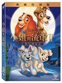 迪士尼動畫系列限期特賣 小姐與流氓2:狗兒逃家記 DVD (購潮8)