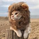 貓咪獅子頭套搞笑寵物裝扮耳朵帽子狗狗貓貓可愛搞笑頭飾發飾圣誕 陽光好物