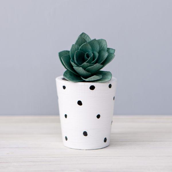 Cactus新意擴香花50ml-生活工場