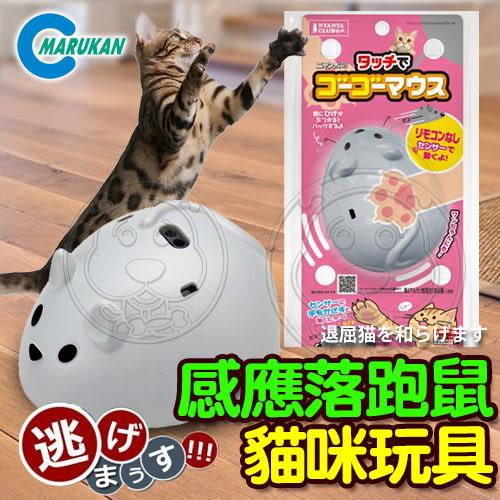 【培菓幸福寵物專營店】日本MARUKAN》MK-CT-400追趕跑跳感應落跑鼠貓咪玩具562016