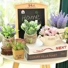 仿真盆栽植物室內裝飾品假花仿真花客廳綠植多肉小擺件北歐ins風  依夏嚴選