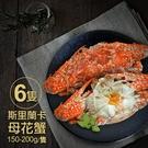 【屏聚美食】斯里蘭卡生凍母花蟹6隻(150-200g/隻)