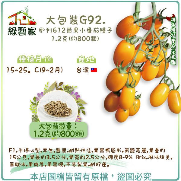 【綠藝家】大包裝G92.凰利612黃果小番茄種子1.2克(約800顆)