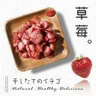 【草莓干→每日熱賣】