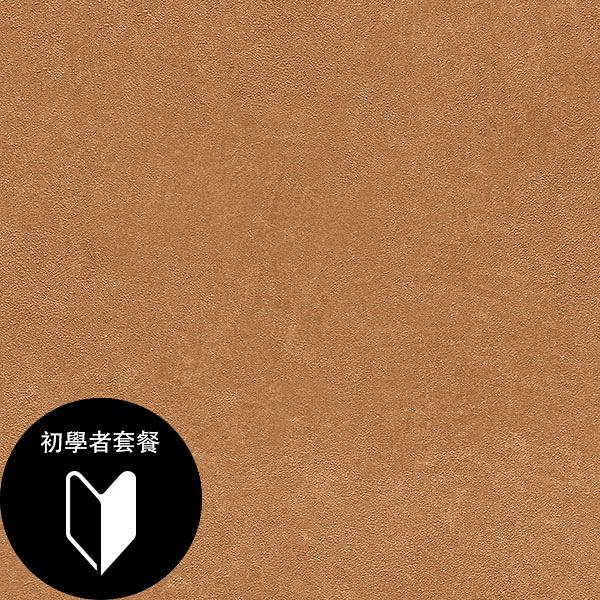 金色素色 rasch(德國壁紙) 2020 /  860184 +施工道具套餐