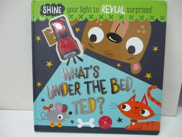 【書寶二手書T8/少年童書_I9T】What s Under The Bed, Ted?_Make Believe Ideas, Rosie Greening