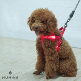 贈電池! LED發光 胸背袋 寵物 電池型 毛小孩 貓 狗狗 夜間 遛狗 防走失 寵物用品 『無名』 P03115
