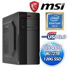 微星H310M平台【瓦杜茲】Intel Pentium G5400/8G/2TB電競機【刷卡含稅價】