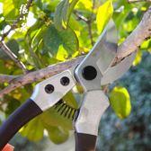 修剪樹枝剪園藝剪刀果園用品修花枝剪粗枝省力園林家用   電購3C