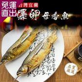 鮮魚鋪 宜蘭XXL超爆卵母香魚(3尾/包)【免運直出】
