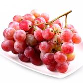 【果之蔬-全省免運】美國加州紅寶石麝香無籽葡萄X1盒【每盒500克±10%】