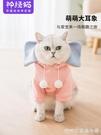 貓咪衣服 小奶貓貓咪衣服寵物衛衣無防掉毛網紅幼貓抖音同款狗狗的夏季薄款 快速出貨