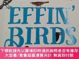 二手書博民逛書店Effin 罕見Birds: A Field Guide to IdentificationY19139 Aa